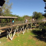 Cango Wildlife Park, Oudtshoorn, South Africa