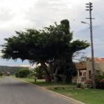 Stillbaai, Lappies Baai, Jongensfontein, Skulpiesbaai Nature Reserve, Sunrise