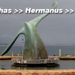 South Africa, Western Cape, Stilbaai, Sleeping Beauty, Cape Agulhas, Hermanus, Stellenbosch