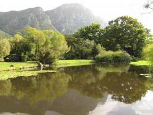 South Africa, Capetown, Kirstenbosch, Botanical Garden, Table Mountain