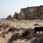 Oman Ras al Jinz Beach View   Travel Photography by Sebastian Motsch (2014)