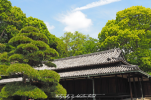 2017 Japan Tokyo Imperial Palace East Gardens | travel phootgraphy by Sebastian Motsch (2017)