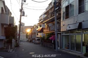 2017 Japan Tokyo Nogizaka | Travel Photography by Sebastian Motsch (2017)
