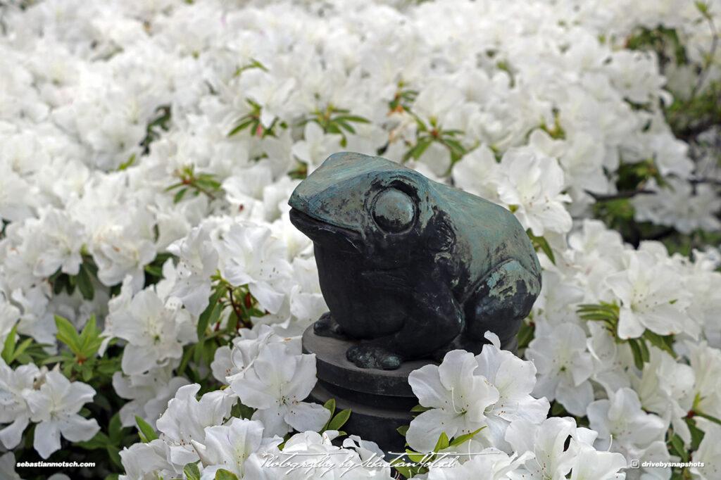 Japan Tokyo Meguro Yanagi Dori Frog Sculpture by Sebastian Motsch