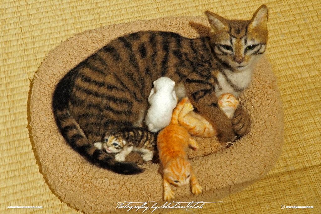 Japan Tokyo Meguro Cat Art Exhibition at Hotel Gajoen by Sebastian Motsch 03